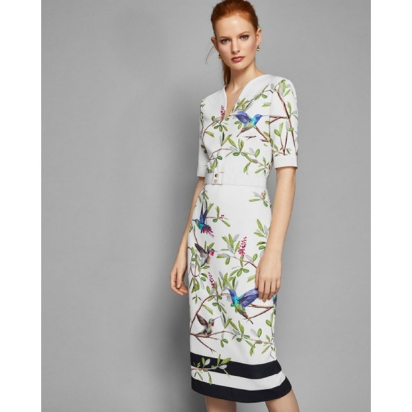 Ted Baker London Dresses & Skirts - Ted Baker Highgrove Sleeve Bodycon